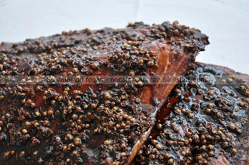 Salmão assado ao molho teriyaki com sementes de coentro